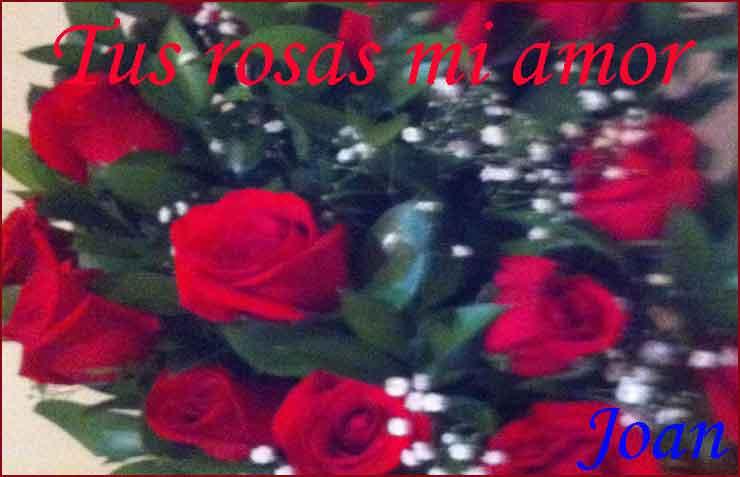 ramo de rosas para LuzM