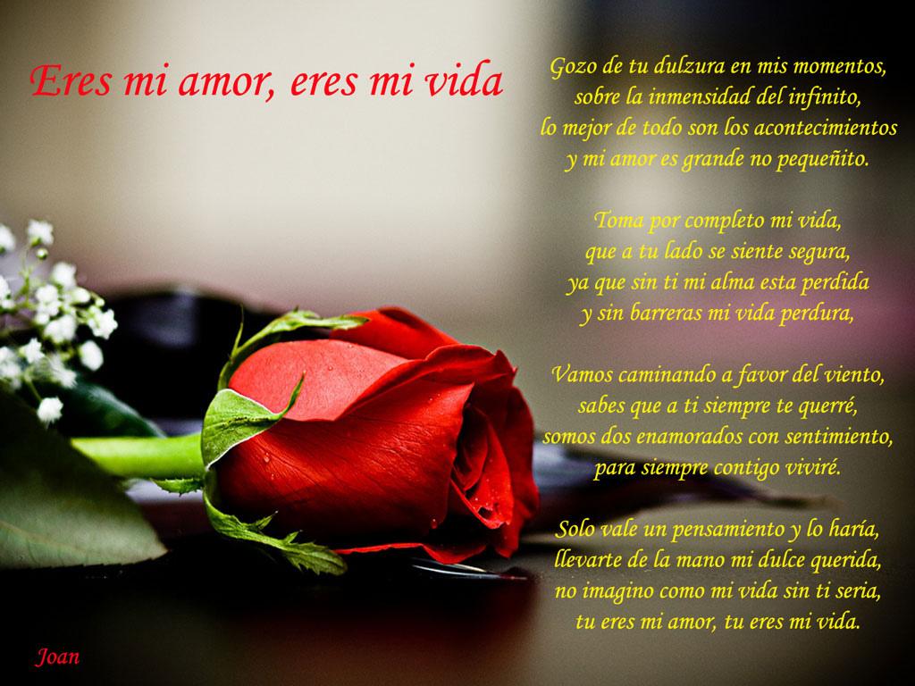 eres mi amor eres mi vida