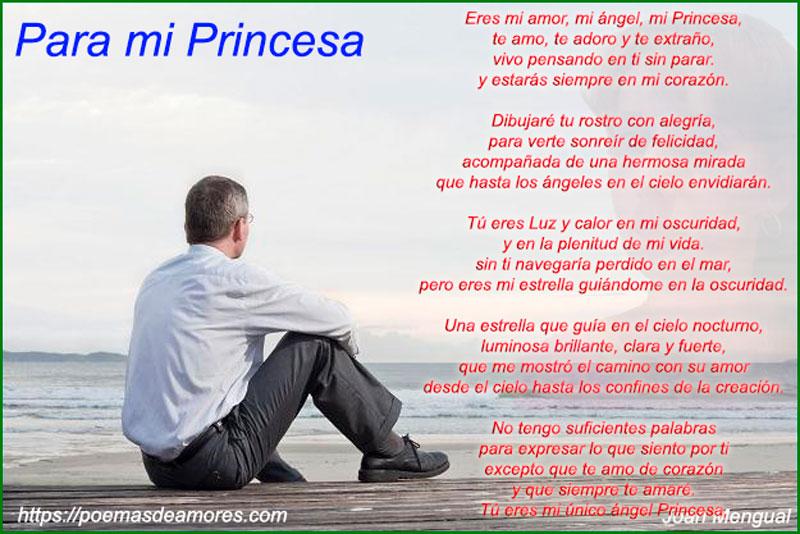 Para mi Princesa poema