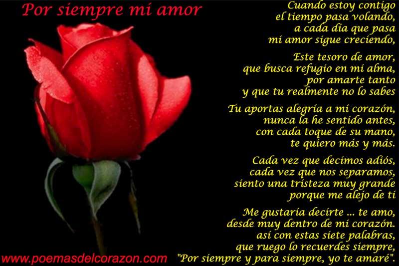 Por siempre mi amor