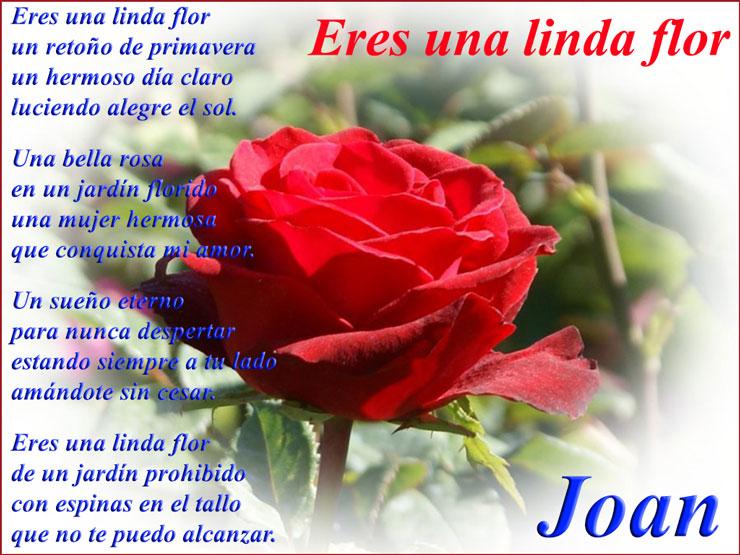 imagen Eres una linda flor poemas para mujer hermosa