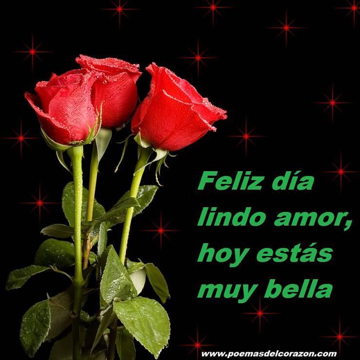 Feliz día lindo amor