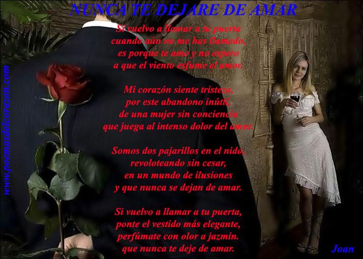 poema nunca dejo de amarte