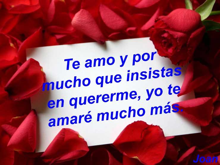 Rosas con mensajes de amor y te amo