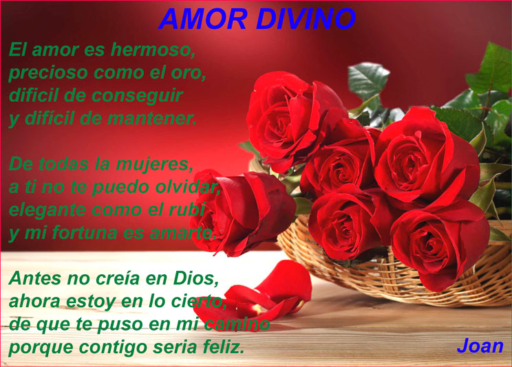 Amor bello en poemas