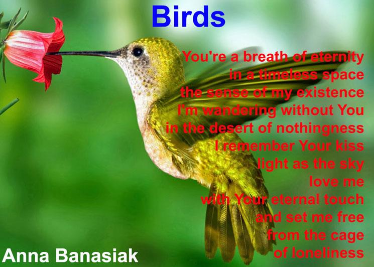 Birds Anna Banasiak