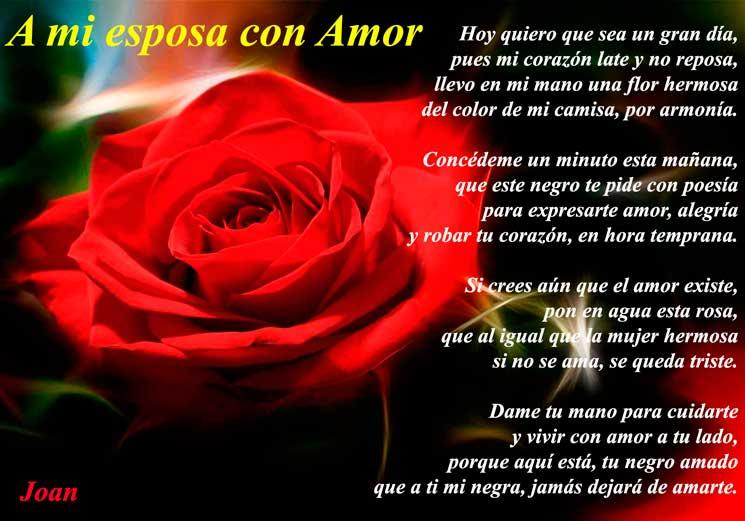 poemas de amor famosos - A mi esposa con amor - Joan Mengual