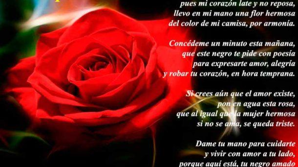 Poemas de amor - cortesia joan mengual