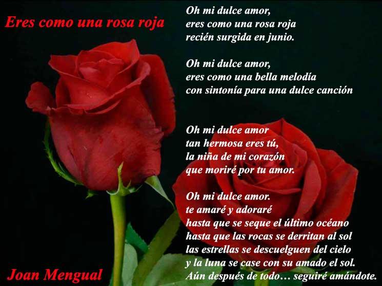 Eres como una rosa roja poema