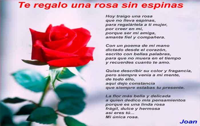 Teregalo una rosa de Joan Mengual para imagenes de amor