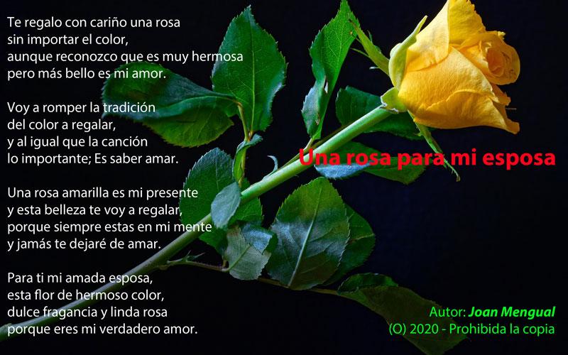 Una rosa para mi esposa