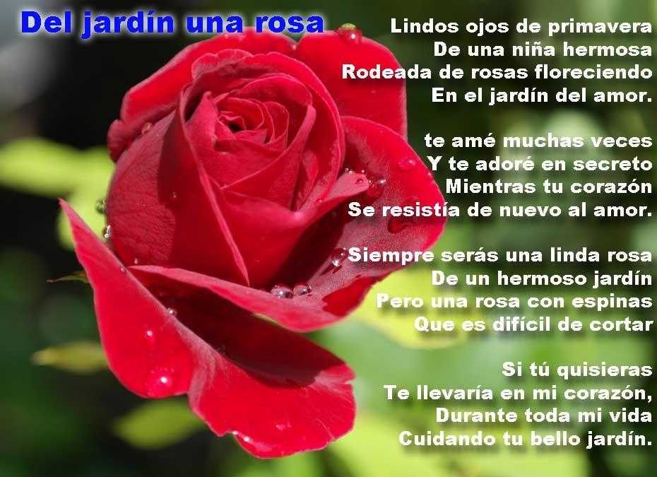 del-jardin-una-rosa - poemas de amor